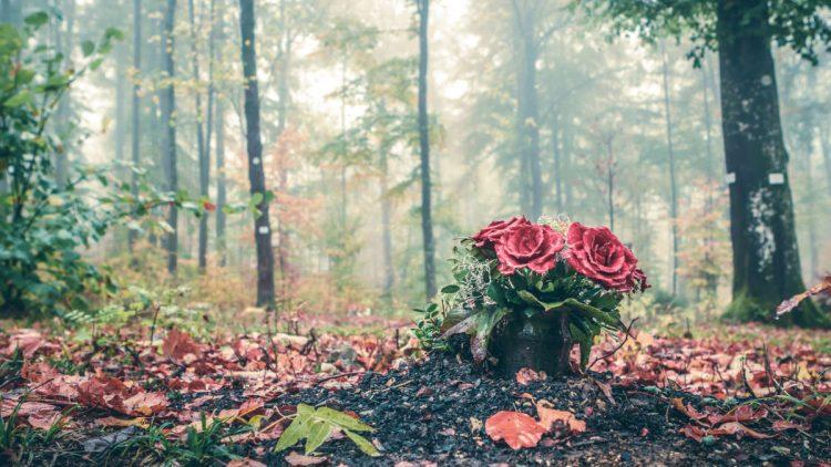 Bestattungsarten - Rosenbouquet in einem Friedwald