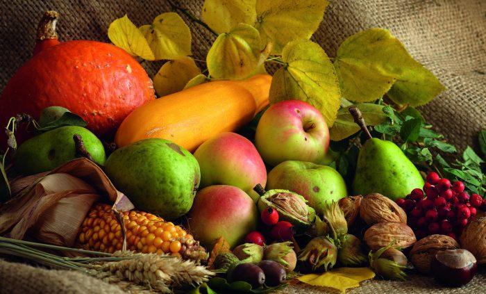 Stillleben mit Äpfeln, Birnen, Mais, Kürbis, Sanddorn und Nüssen